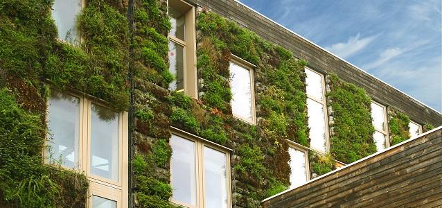 Immeuble-Vert